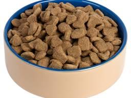 Best quality dry dog food