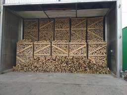 Hornbeam Firewood / Weissbuche / Haagbeuk